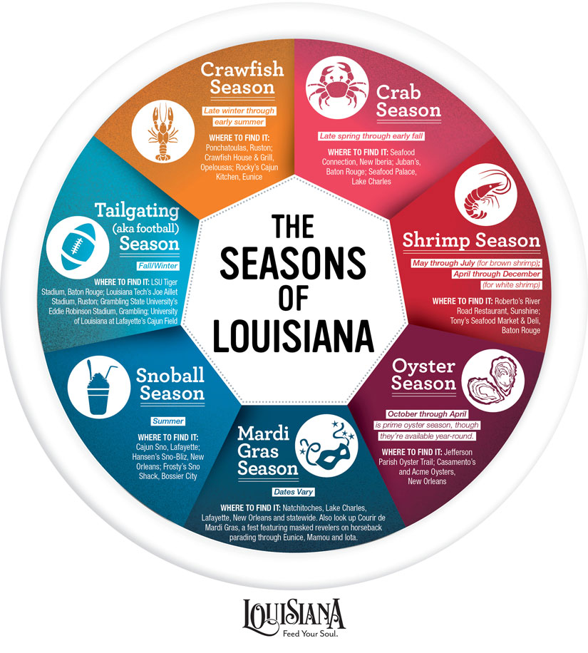 Seasons of Louisiana Infographic