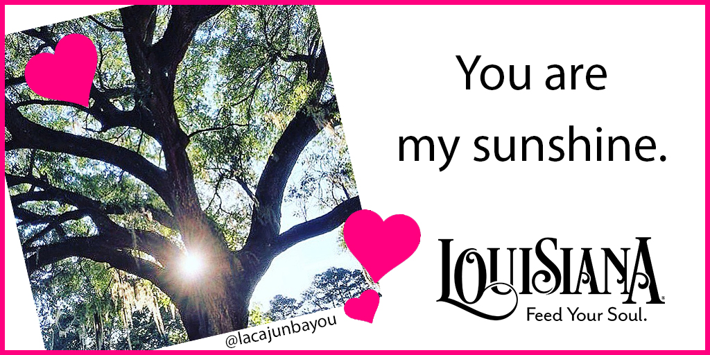You Are My Sunshine Valentine