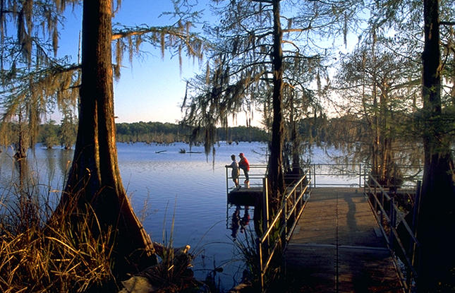 Visit Chicot State Park for fishing.