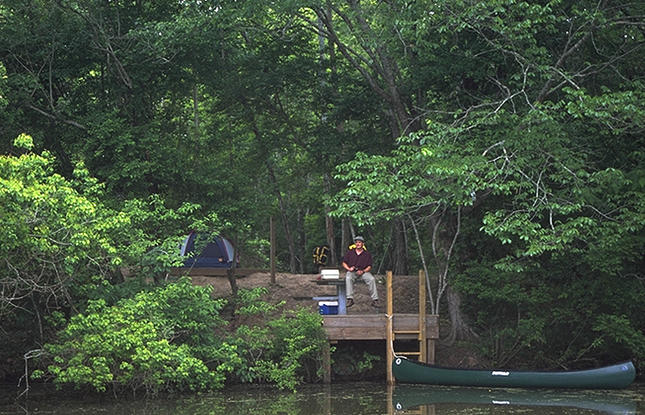 Go fishing and canoeing at Lake Fausse Point State Park