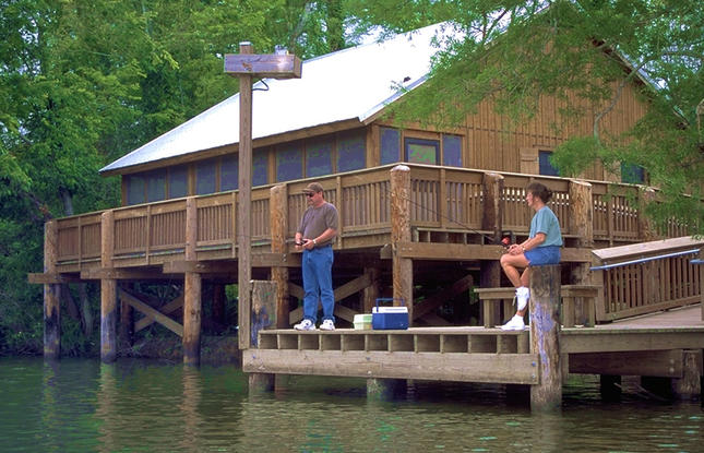 Stay at one of the cabins for rent at Lake Fausse Point State Park.