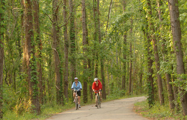 Ride the Tammany Trace Bike Trail