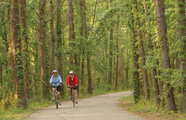 Riding the Tammany Trace in the Northshore