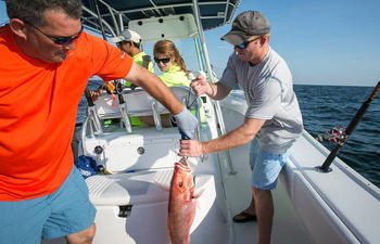Catching red snapper on fishing charter