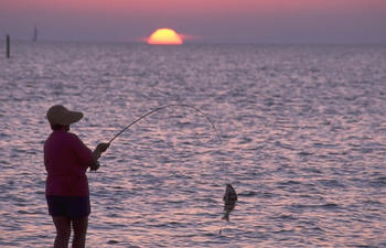 sunset-surf-fishing-800x600.jpg