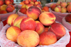 Mitcham Farm Peaches