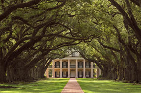 Oak Alley Plantation Photo
