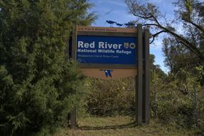 Red River National Wildlife Refuge Photo