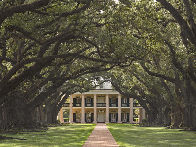 See Oak Alley on our plantation tour!