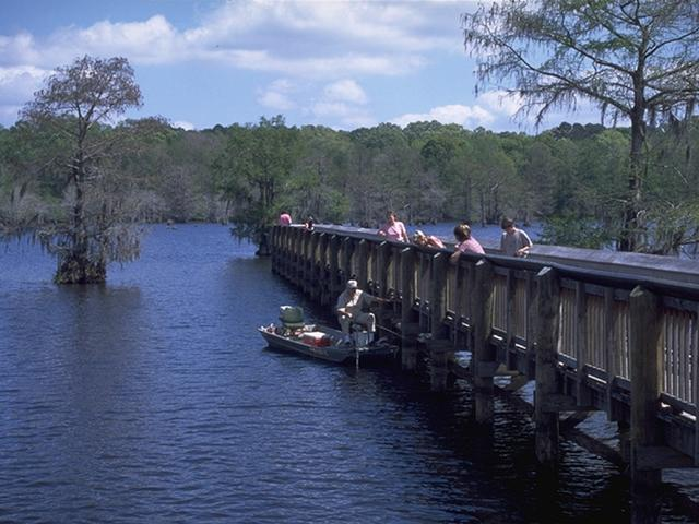 The fishing pier at Chicot State Park. Photo 2