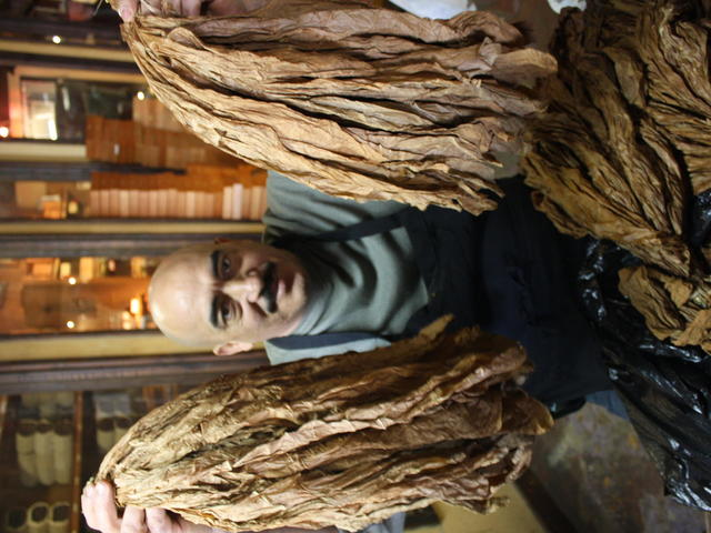 Cigar Factory New Orleans Photo 3