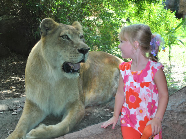 Get face to face with wildlife at the Alexandria Zoo!