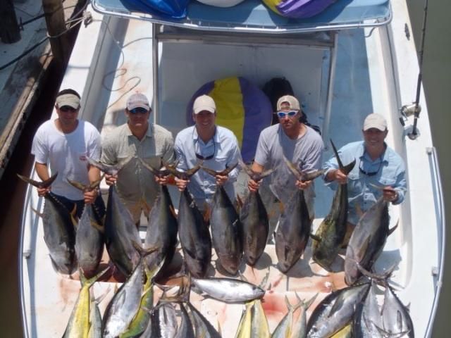 www.fishcommander.com (yellowfin tuna fishing, dorado fishing, wahoo fishing with fish commander charters