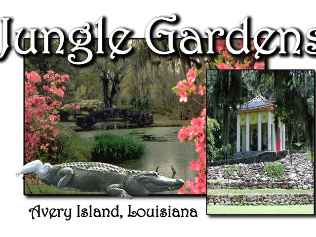 Jungle Gardens Avery Island, Louisiana Photo 2