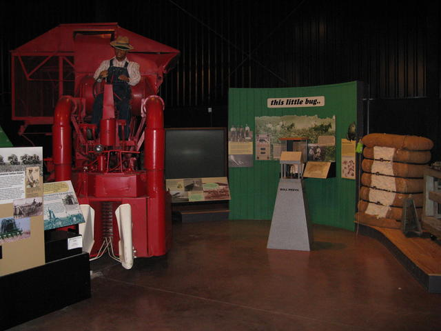 Cotton Pickin' and Boll Weevil exhibits Photo 5