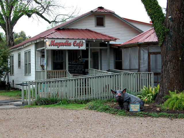 Magnolia Cafe Photo