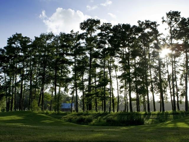 The Atchafalaya Golf Course at Idlewild Photo 5