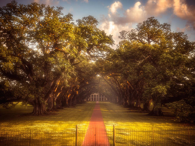 Oak Alley Plantation, Restaurant & Inn Photo 6