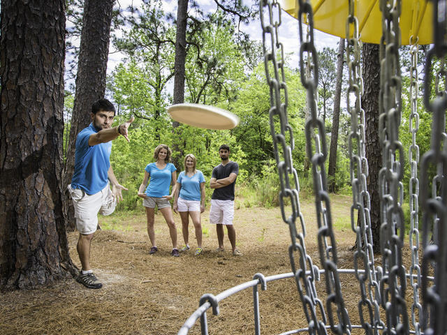 Disc golf is one of the many activities at Sam Houston Jones State Park Photo 2
