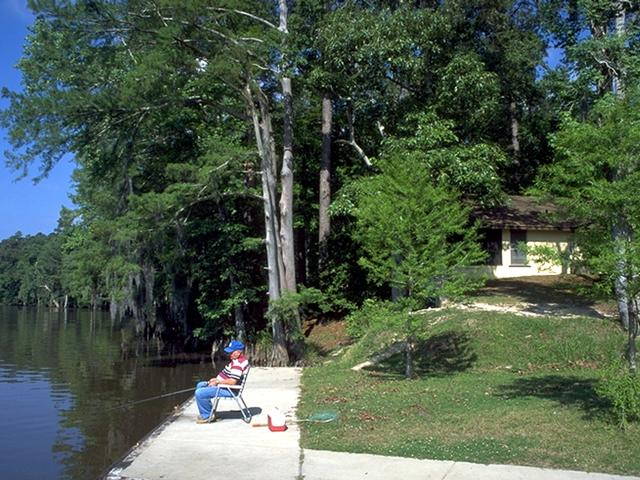 Spend a relaxing afternoon on the banks of the Calcasieu River, at Sam Houston Jones State Park. Photo