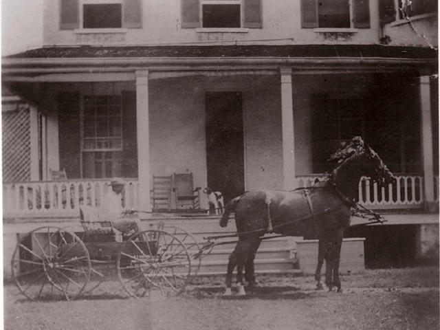 Horse and Buggy at Southdown 1890's
