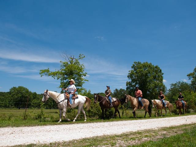 Horseback riding trails and stables