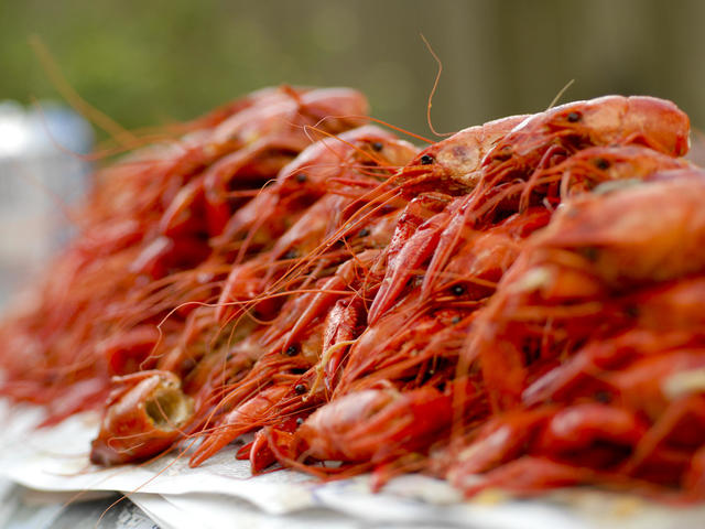 Boiled Crawfish in Baton Rouge