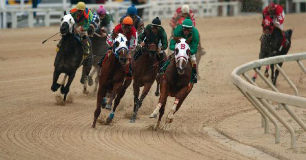 Off track betting in baton rouge greyhound racing betting games in golf