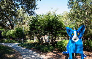 Blue Dog at the Besthoff Sculpture Garden New Orleans