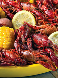 Louisiana Culinary Trails